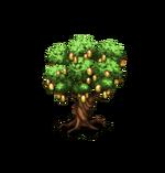 Tree-Mango
