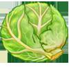 Ingredient-Green Cabbage
