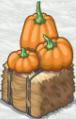 Pumpkin Hey Bale