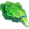 Ingredient-Romaine Lettuce