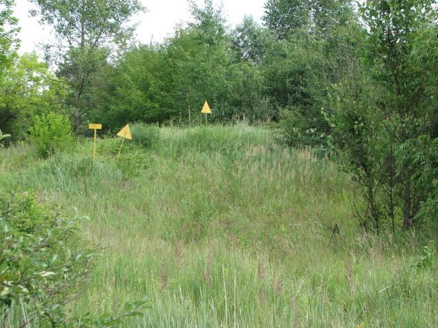 File:Chernobyl kopachi buried village 5.jpg