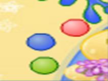 Cho Color Balls