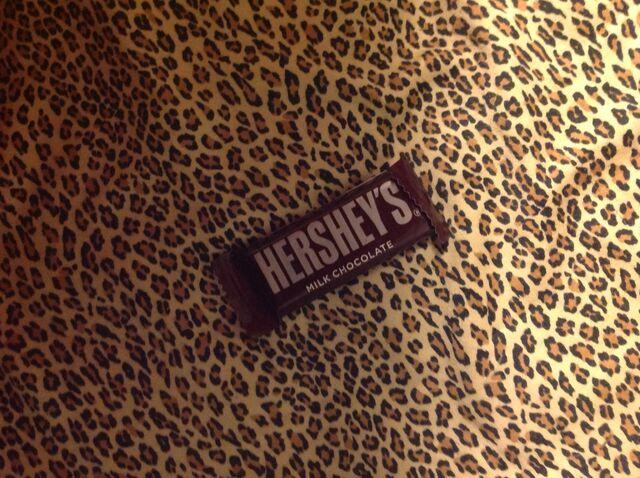 File:Hershey mini milk chocolate bar.jpeg