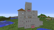 Randomized Castle