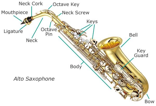 File:Saxophone-diagram.jpg