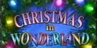 Christmas in Wonderland (TV episode)