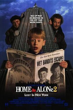 HomeAlone2 Poster