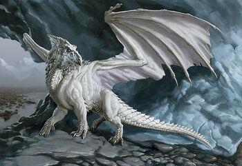 Large-white-dragon