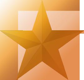 File:Bronzestar.png