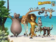 MadagascarWallpaper1024