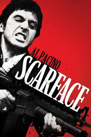 Archivo:Scarface-1.jpg