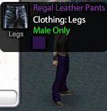 Regal Leather Pants