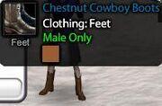 Chestnut Cowboy Boots