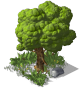 Medium Tree04