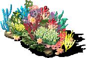 Coral Reef 2-SE