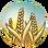Wheat (Civ5)