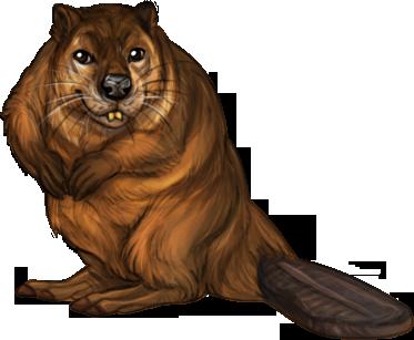 File:Item beaver.png