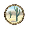 Item new world desert background
