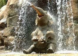 File:Elephant funny.jpg