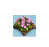 File:Cornflower Bed.png