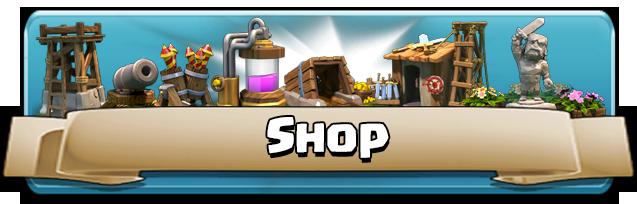 Shop Main Banner