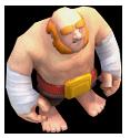 Boxer Giant1