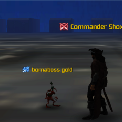 Commander Shox & bornaboss gold