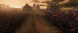 Saleucami fields