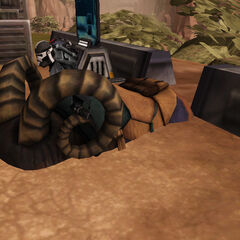 Bantha's are so fat they sink through the ground!