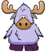 Lavender Moose