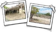 Haitischoolcp