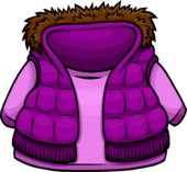 Purple Vest clothing icon ID 4024