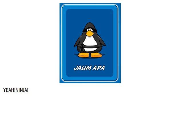 File:Jaumapa ninja.JPG