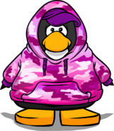 Pink Hip Hop Hoodie from a Player Card