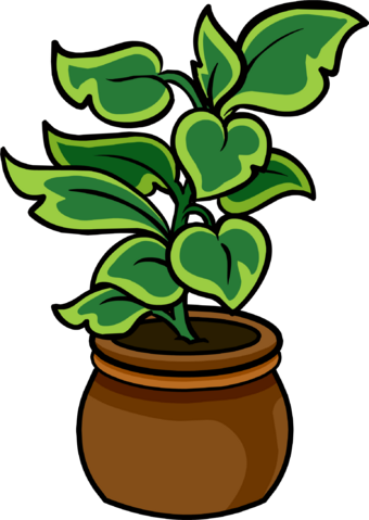 File:Potted Palm.PNG
