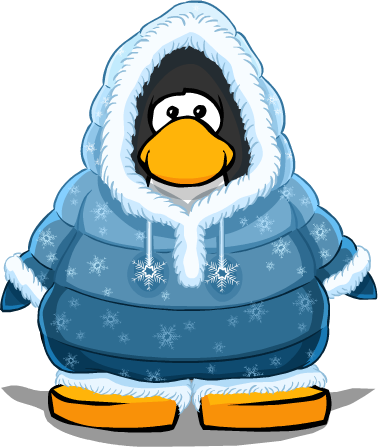 File:SnowyNightParkaPC.png
