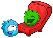 Puffles playing on a Stone Chair