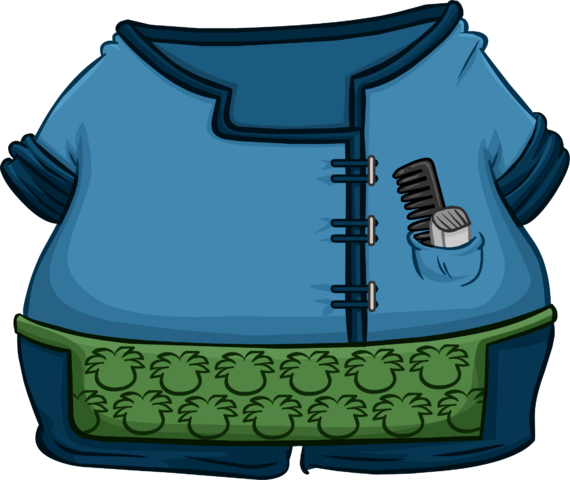 File:Clothing Icons 4809.png