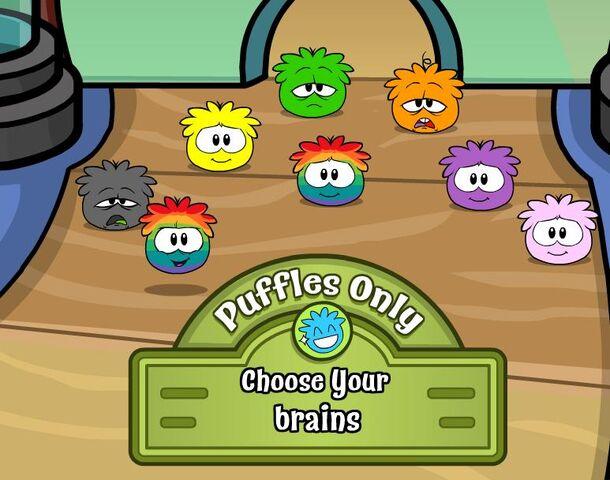 File:Rainbow puffle glitch.jpg