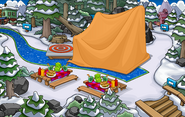 Club Penguin Island Party Forest