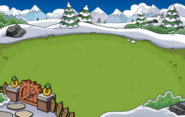 Igloo Backyard Location 7