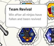Team revival stamp book
