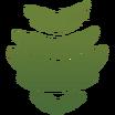 Decal Dino Stripe icon