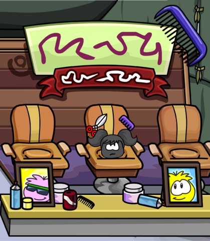 File:Puffle Grooming card image.png