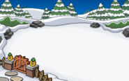 Igloo Backyard Location 1