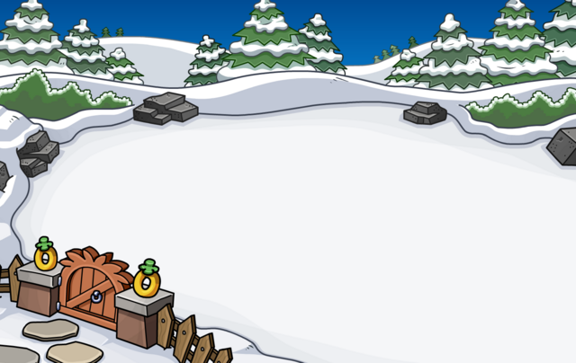 File:Igloo Backyard Location 1.png