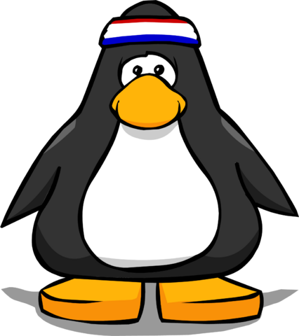 File:HeadbandPC.png