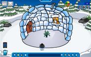 Ninja moderator igloo