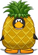 Pineapple costume on playercard