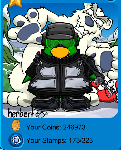 File:My Playercard in CP8.png